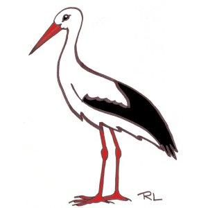 Les oiseaux en fiches coloriages photos et dessins avec pouyo - Cigogne dessin ...