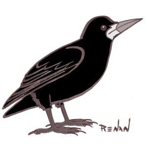 Les oiseaux en fiches coloriages photos et dessins avec - Coloriage corbeau ...
